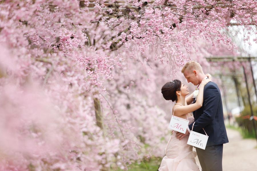 京都日和|桜|ロケフォト|ウェディングドレス