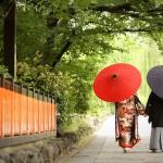 京都日和 新緑 ロケフォト 和装031