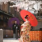京都日和 桜 ロケフォト 和装102