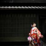 京都日和 桜 ロケフォト 和装107