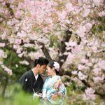 京都日和|桜|ロケ|和装|前撮り|2017_030