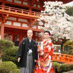 京都日和|桜|ロケ|和装|前撮り|2017_041