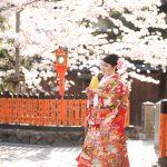 京都日和|桜|ロケ|和装|前撮り|2017_042