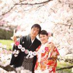 京都日和|桜|ロケ|和装|前撮り|2017_048