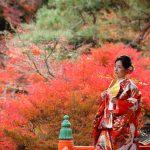 京都日和|前撮り|和装|京都|紅葉|寺|庭園|2018-32