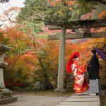 京都日和|前撮り|和装|京都|紅葉|寺|庭園|2018-35