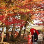 京都日和|前撮り|和装|京都|紅葉|寺|庭園|2018-43